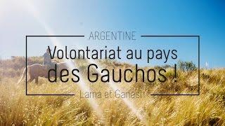 ARGENTINE : Volontariat en Argentine ! - Lama et Ganesh