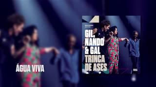 Baixar Multishow Ao Vivo Gil, Nando & Gal: Trinca de Ases | Água Viva