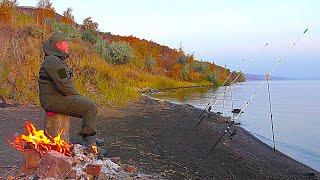 ПОПАЛ НА БЕШЕНЫЙ КЛЕВ ПРИШЛИ ОНИ И.. Рыбалка осенью с ночевкой.