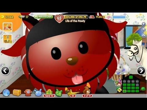 Old Facebook Games: Zynga's PetVille