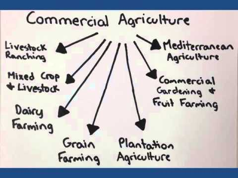 ap human geography unit 5 agriculture youtube