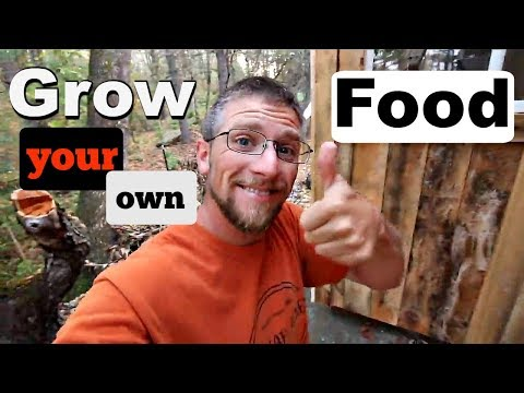 The New Face of Modern Homesteading! (interview)