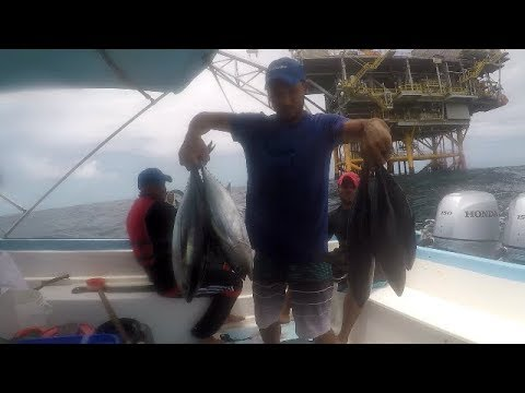 OFFSHORE FISHING FOR BLACK FIN TUNA - Rig Fishing, Trinidad