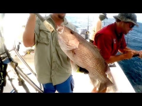 "Grand Isle #3- ""MONSTER MANGROVE & RED SNAPPER"" offshore fishing Louisiana"