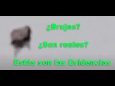 Ataque fatal de un tiburon en Brasil from YouTube · Duration:  2 minutes 15 seconds