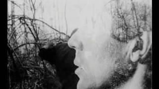 видео Красные и белые А. Алдан-Семенов