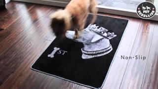 Pet Rebellion  Stop Muddy Paws