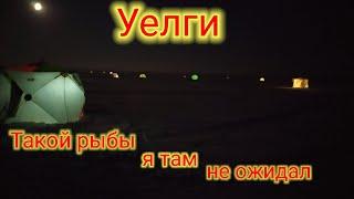 Уелги 01 12 2020 Это Озеро Радует и Удивляет