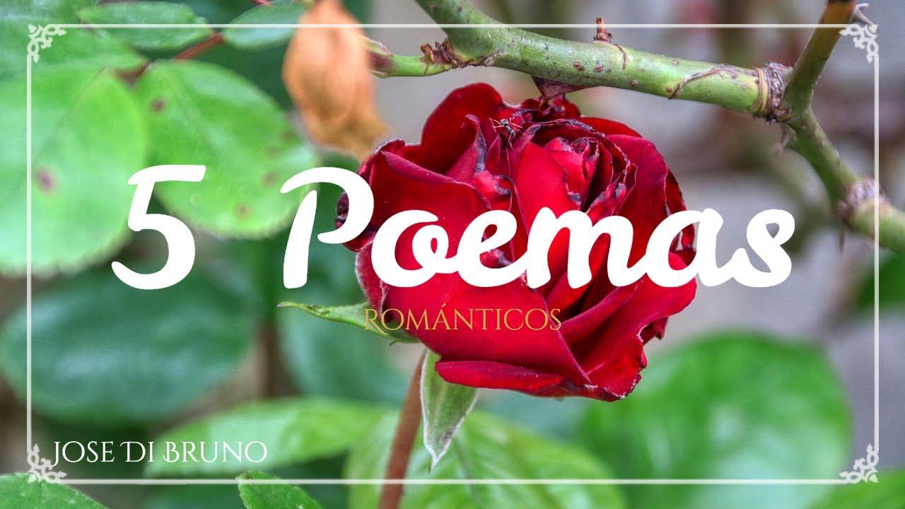 5 Poemas De Amor Cortos Súper Románticos Narrados Videos De Amores Youtube