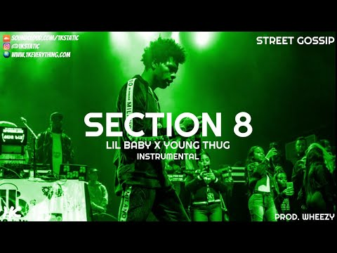 Lil Baby x Young Thug - Section 8 (Instrumental)