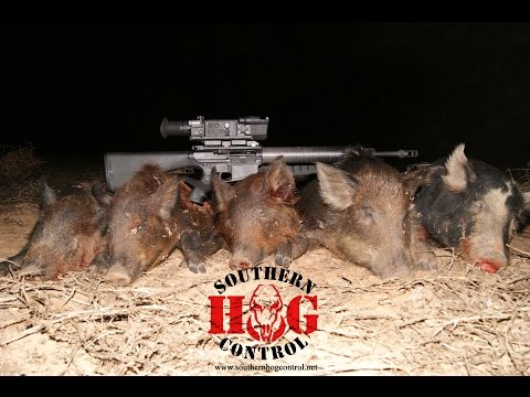 Pulsar N750 Hog Control Missio...