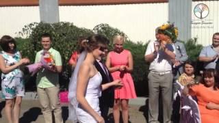!Свадебная регистрация