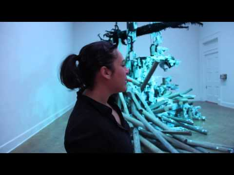 Mia Feuer at the Corcoran Gallery of Art