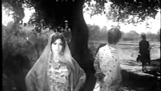 Rangeela & Munawwar Zarif Funny song.flv