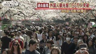 花見効果?外国人観光客150万人を突破 過去最高(15/04/22)