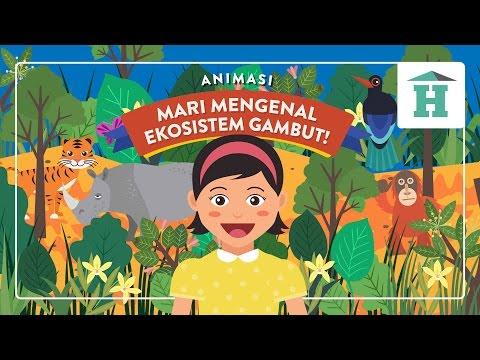 Animasi Anak: Mari Mengenal Ekosistem Gambut!
