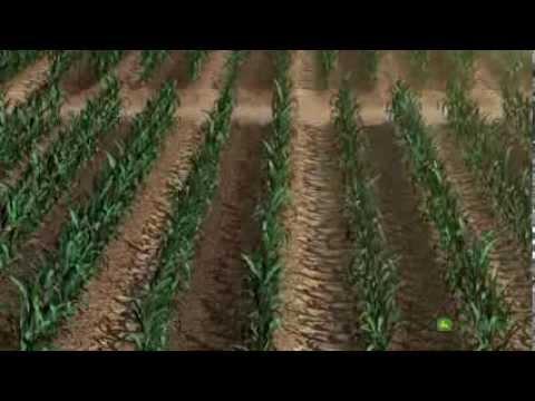 Sistema John Deere Water de riego para cultivo de maíz. thumbnail