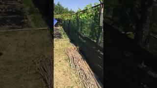 видео Строительная сетка от производителя