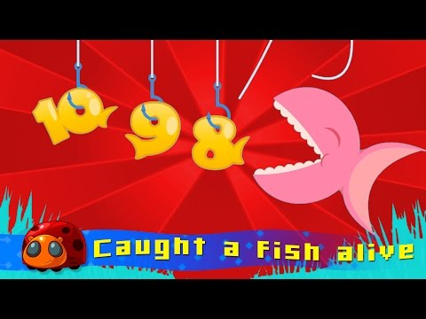 12345 ce I Caught A Fish A  Nursery Rhymes for kids  JellyBug