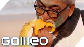 Darum sind die Inder so verrückt nach Mango | Galileo | ProSieben