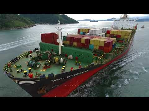 The Container-Ship MSC Dymphna - Port of Santos City - Brazi