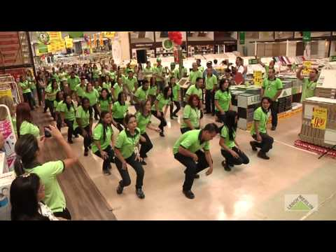 Flash mob leroy merlin goi nia 24 08 2013 youtube for Leroy merlin flash