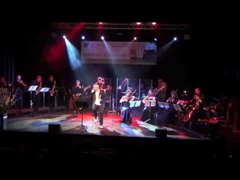 Robert Janowski - Całuję Twoją dłoń, Madame.  SONG PL koncert