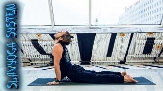 Тренировка по йоге 🌱 Комплекс йоги для гармоничной проработки всего тела ⭐ SLAVYOGA