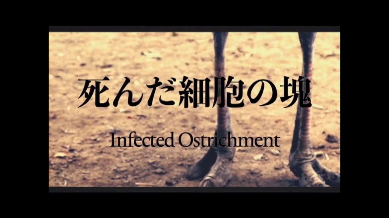 SHINDA SAIBO NO KATAMARI – INFECTED OSTRICHMENT [OFFICIAL MUSIC VIDEO] (2020) SW EXCLUSIVE