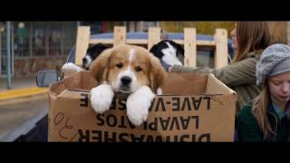 A DOG'S PURPOSE - OFFICIAL UK TRAILER [HD]