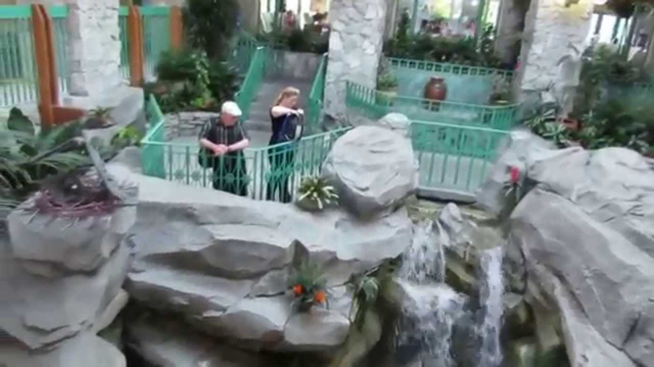 shades of green resort waterfall in front of lobby youtube