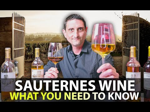 wine article What you Need to Know about Sauternes Wine  Your 5Minute Guide