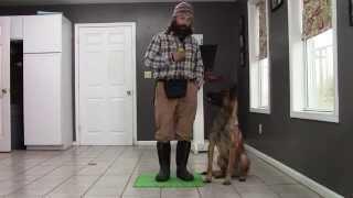Teaching proper heel position!