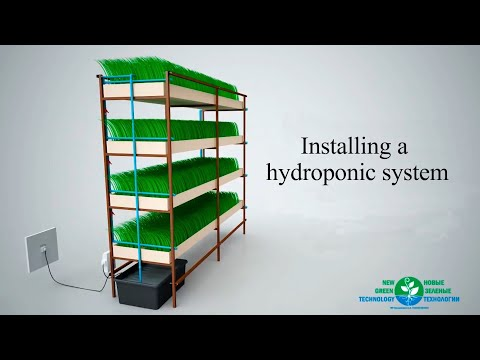 Installing The Hydroponic System