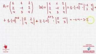 Математика без Ху%!ни. Как вычислить определитель.