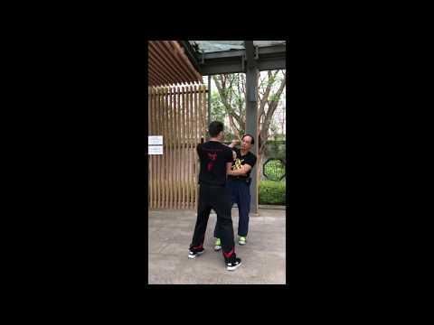 Wing Tsun in Hong Kong Si Fu Leung Kwok Wah and Si Fu Várkonyi Patrik