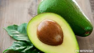 Сколько калорий в авокадо?