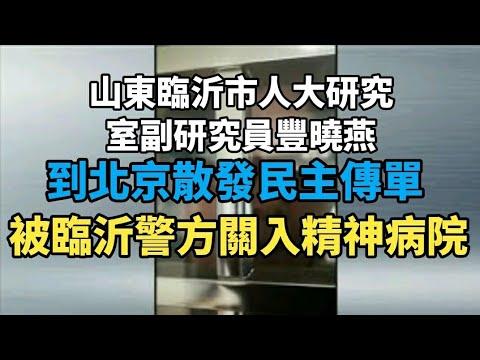 山东临沂人大副研究员吁民主 被关精神病院(图/视频)