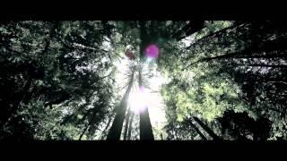Trailer MV Nỗi nhớ anh mùa đông - Hồ Quỳnh Hương