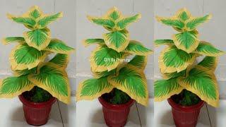 DIY Tanaman Hias dari Kantong Plastik | Docorative Plants from plastic bag