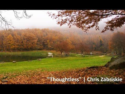 Chris Zabriskie - Thoughtless | Full Album [Ambient Electronic Instrumental Minimalism Music]