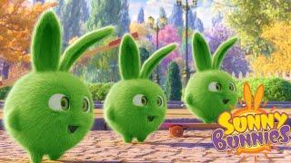 SUNNY BUNNIES - TRIPLO HOPPER | Cartoni animati divertenti per bambini | WildBrain