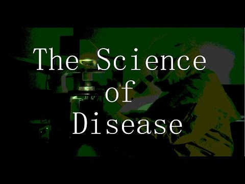 The Science of Disease: World War Z 2013 vs Contagion 2011
