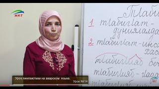 Уроки лингвистики. Аварский язык. Урок 14.