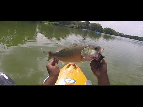 NYC Bass Fishing: Prospect Park Lake