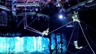 Цирк братьев Запашных - шоу