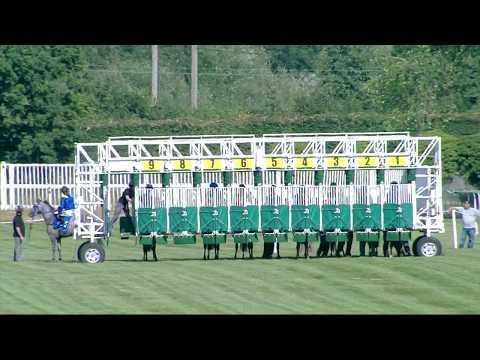Dubai International Arabian Races At Newbury, 29th July International Stakes