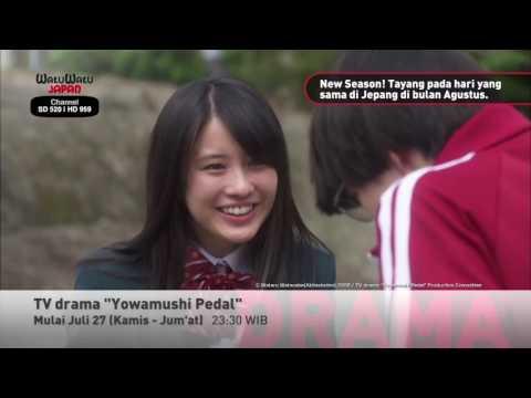 TV Drama - Yowamushi Pedal