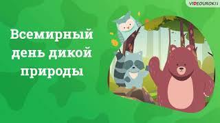 Видеоурок «Всемирный день дикой природы»
