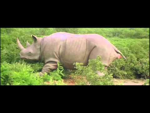 Ace Ventura - Rhino Birth Scene, Jim Carrey